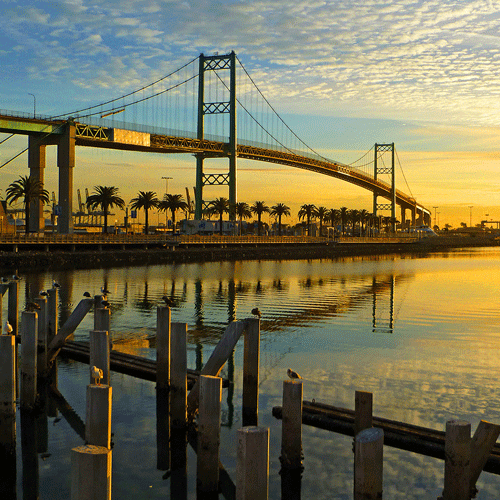 Vincent Thomas Bridge​