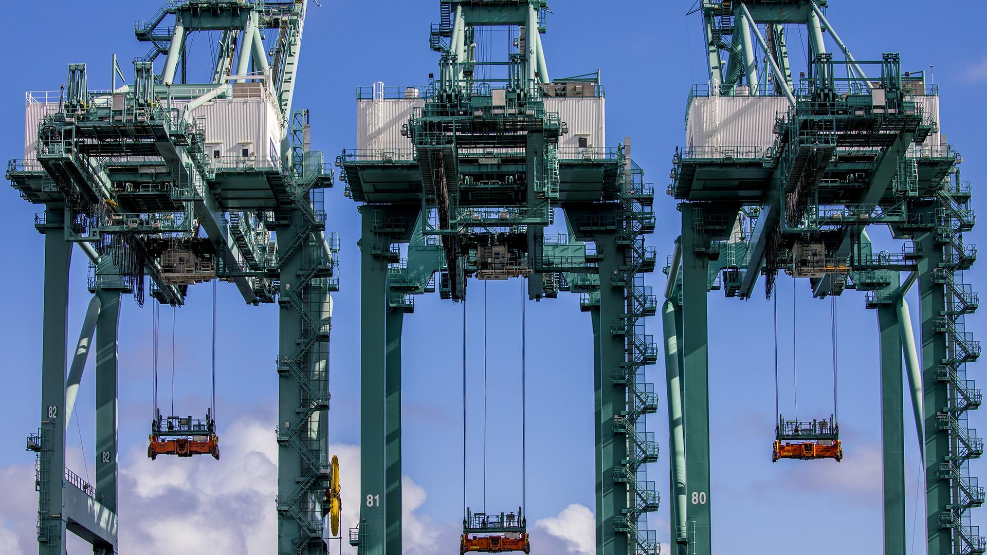Cranes Against Clouds