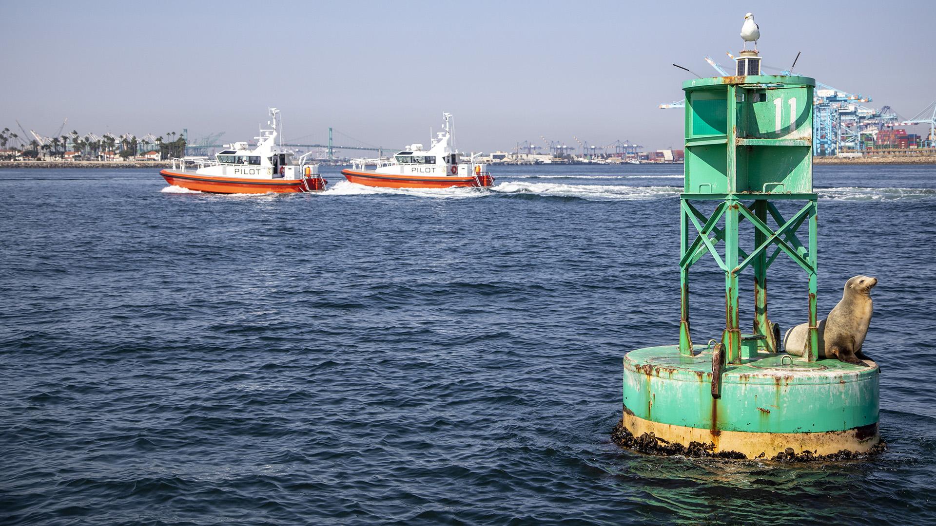 Buoy and Boats